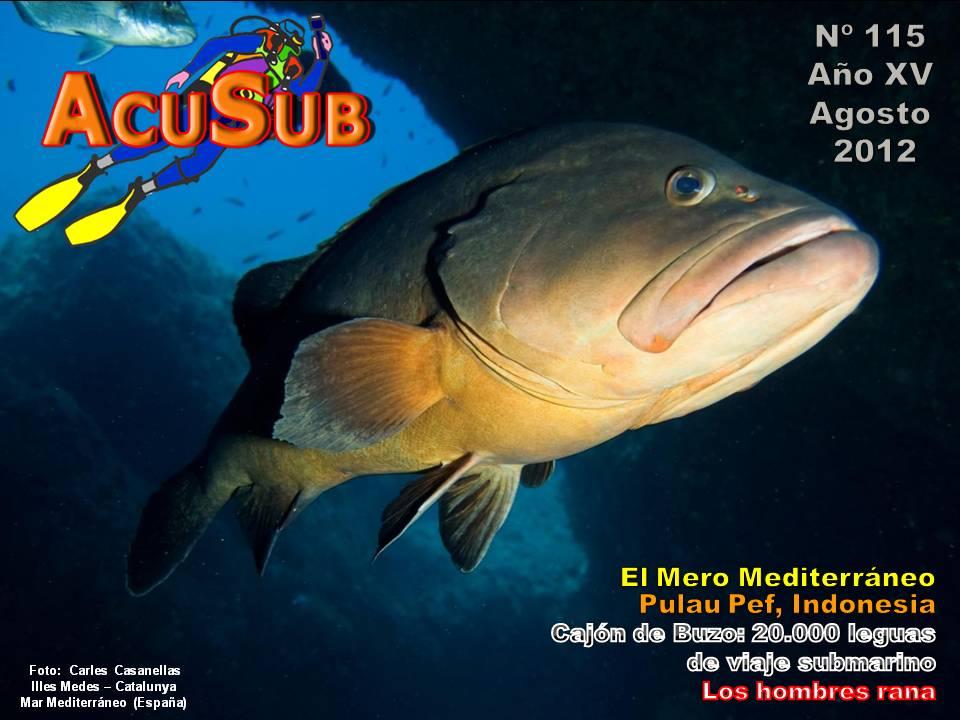 Acusub revista de buceo nº 115