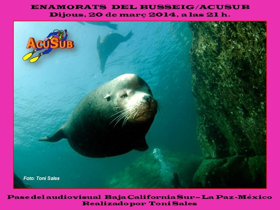 """Pase del audiovisual """"California Sur – La Paz – México"""". Enamorats del Busseig – Acusub"""
