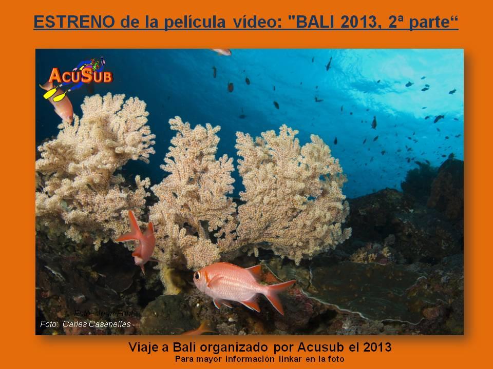 """ESTRENO de la película vídeo: """"BALI 2013, 2ª parte"""""""