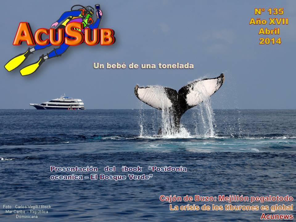 Acusub nº 135 Revista de Buceo