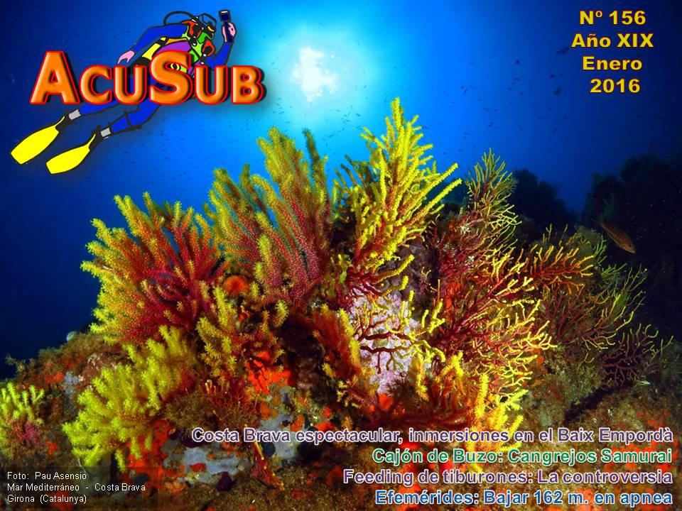 ACUSUB Revista nº 156