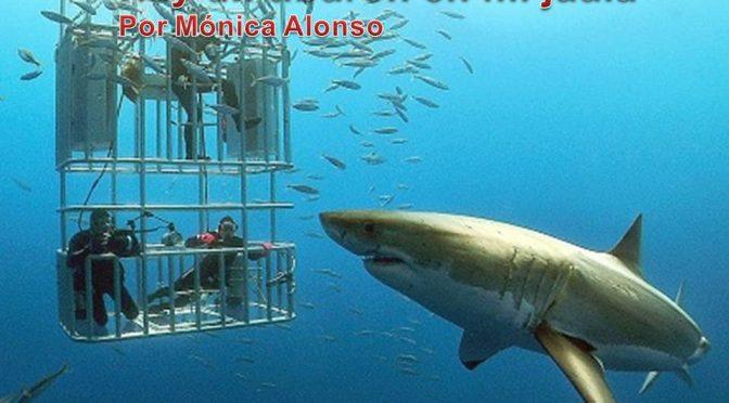 Hay un tiburón en mi jaula por Mónica Alonso Ruiz
