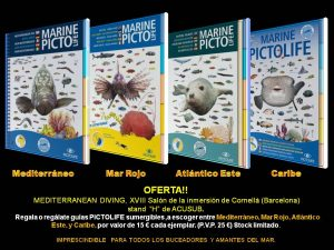 GUIAS PICTOLIFE 2017