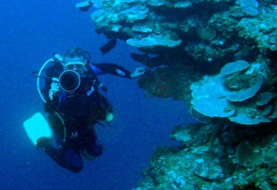 PASE DEL VÍDEO CUBA 2006. ACUSUB