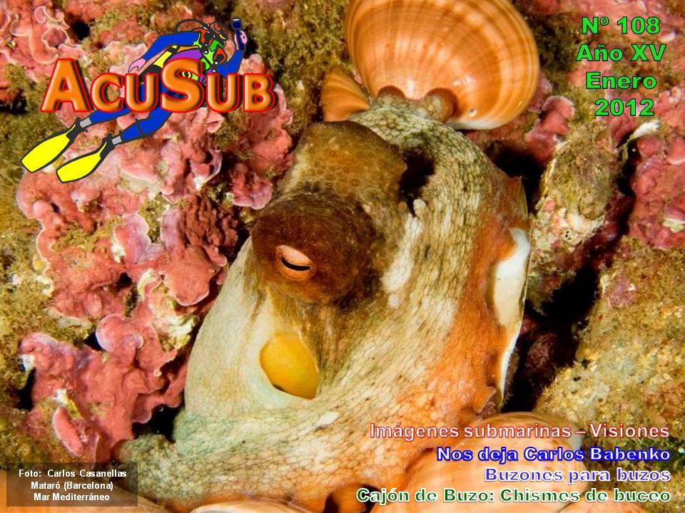 Acusub revista de buceo nº 108