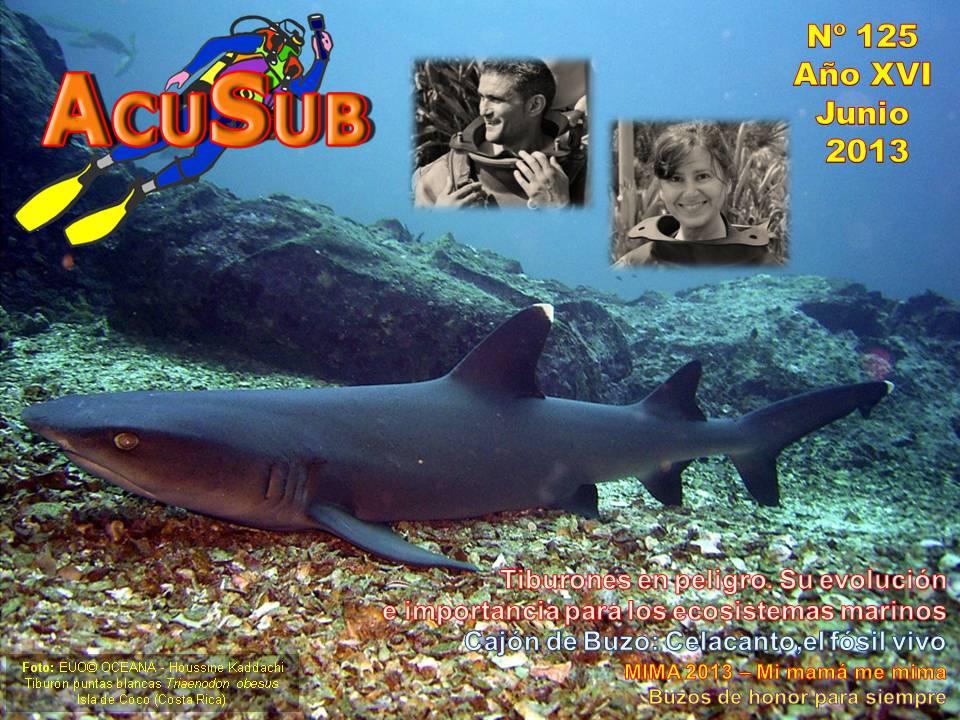 Acusub revista de buceo nº 125