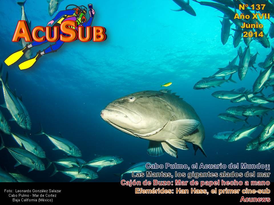Acusub nº 137 Revista de Buceo