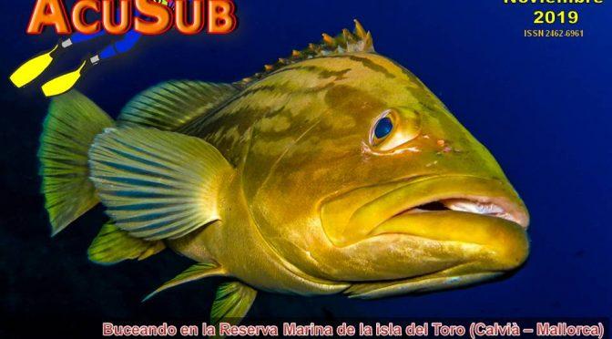 ACUSUB Revista 202